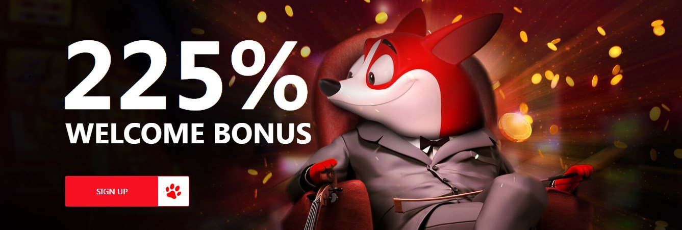 red dog casino bonus