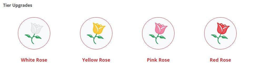 Red Rose Casino VIP